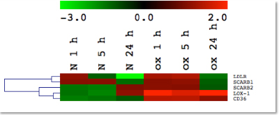 fig-Early-Transcriptomic